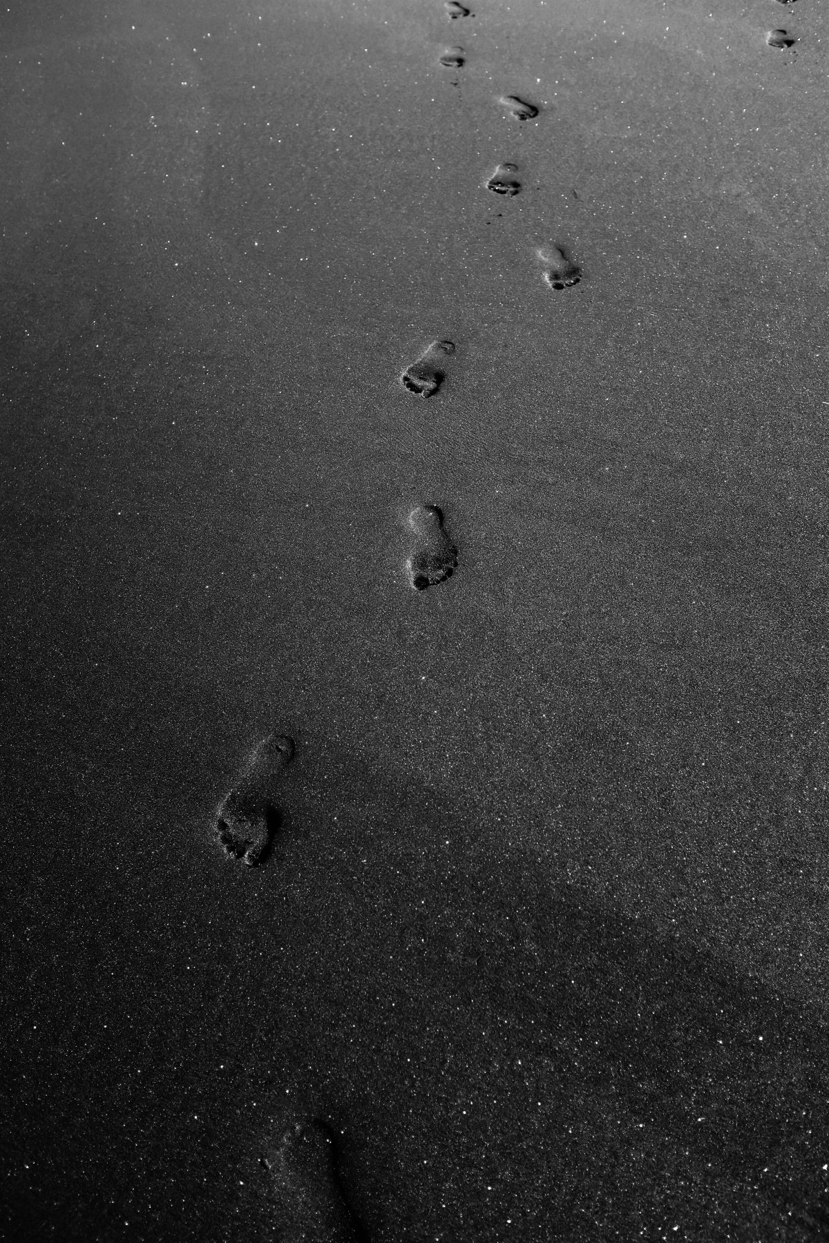 The Hopeful Wanderer – Footprints in theSand
